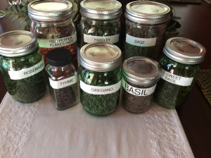 A variety of of herbs and spices!