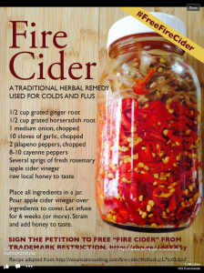"Fire Cider by Mountain Rose as seen on Facebook by ""Heal Thy Self"""